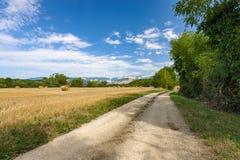 La strada del terreno coltivabile in un paesaggio della montagna con i campi ha riempito di ha Immagini Stock