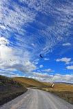 La strada della ghiaia attraversa il parco Torres del Paine Fotografie Stock Libere da Diritti