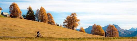 La strada di giro dei ciclisti in alpi cade in Alpe di Siusi Dolomia, Sou Immagine Stock Libera da Diritti