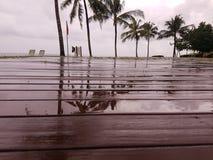 La strada di legno bagnata alla spiaggia Immagine Stock