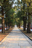Strada di pietra a Pechino Fotografia Stock