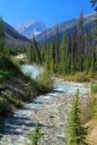 La strada di Windemere ed il fiume di Tolumn avvolgono il modo attraverso Rocky Mountains vicino al canyon di marmo, il parco naz fotografia stock libera da diritti