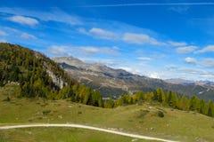 La strada e gli alberi della montagna abbelliscono nelle alpi Immagini Stock Libere da Diritti