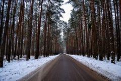 La strada il giorno gelido di inverno del lago Fotografie Stock