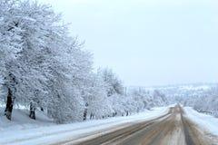 La strada innevata va in profondità nel paese delle meraviglie magico dell'inverno della foresta Il pericolo che guida sulla stra immagine stock