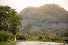 La strada nebbiosa nella foresta, bella immagine del sentiero didattico ha messo il grano Fotografie Stock Libere da Diritti