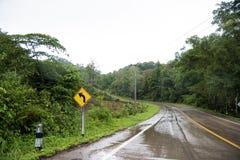 La strada nebbiosa nella foresta, bella immagine del sentiero didattico ha messo il grano Fotografia Stock Libera da Diritti