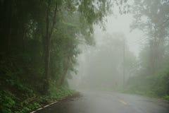 La strada nebbiosa nella foresta, bella immagine del sentiero didattico ha messo il grano Fotografia Stock