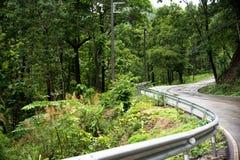 La strada nebbiosa nella foresta, bella immagine del sentiero didattico ha messo il grano Immagini Stock
