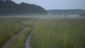 La strada nel campo su un fondo di nebbia archivi video