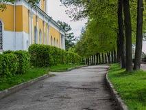 La strada nel parco Fotografia Stock