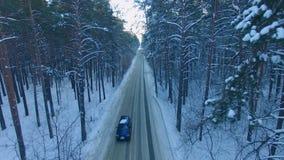 La strada nella foresta di inverno video d archivio