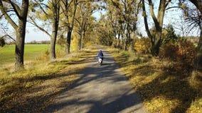 La strada nella foresta gialla di autunno con il vicolo ed il ragazzo guidano su un motorino video d archivio