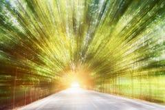 La strada nella velocità di moto sul sentiero forestale dell'asfalto ha offuscato il fondo immagine stock libera da diritti