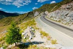 La strada nelle montagne. Montagne di Altai Fotografia Stock Libera da Diritti