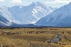 La strada in Nuova Zelanda Fotografie Stock Libere da Diritti