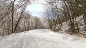 La strada principale della foresta dell'inverno senza automobili, va pro video d archivio