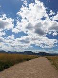 La strada a Rocky Mountains Fotografie Stock
