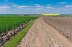 La strada sterrata fra il campo agricolo con i raccolti dell'inverno ed i maggesi sinistri sistema Immagini Stock Libere da Diritti