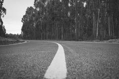 La strada a successo Fotografia Stock