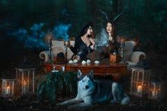 La strega delle ragazze nel legno evoca fotografia stock libera da diritti
