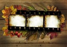 La striscia di pellicola e l'autunno rasentano il fondo di legno d'annata Fotografia Stock Libera da Diritti