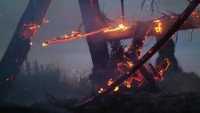 La structure en bois brûle avec des étincelles la nuit banque de vidéos