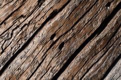 La struttura è un vecchio gray, un bordo di legno decomposto con le crepe ondulate profonde ed i fori fotografia stock