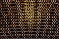La struttura del fondo ed il modello di una sezione del favo della cera da un alveare hanno riempito di miele dorato in una vista immagine stock libera da diritti