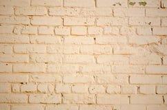 La struttura del muro di mattoni fotografia stock libera da diritti