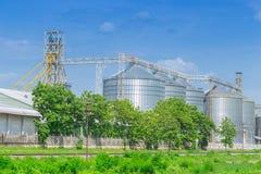 La struttura del silo per la memorizzazione della massa ha asciugato la fabbrica del seme Immagini Stock Libere da Diritti