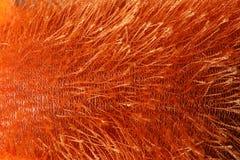 La struttura dell'arancia ha tricottato il tessuto sfocato come fondo fotografia stock libera da diritti