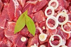 La struttura della carne, del foglio dell'alloro e della cipolla Fotografie Stock Libere da Diritti