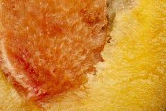 La struttura della frutta della frutta della prugna una è ingrandetta alla dimensione dello schermo Immagine Stock Libera da Diritti