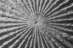 La struttura della pietra fotografie stock