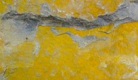 La struttura della pietra ha molta muffa gialla fotografia stock
