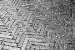 La struttura delle vie bagnate ha allineato con i mattoni di pietra Fotografia Stock Libera da Diritti