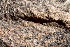 La struttura di beige non lucidato naturale del granito con il nero spruzza di colore immagini stock libere da diritti