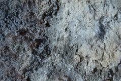 La struttura di lerciume è simile alla vecchia pietra o calcestruzzo Immagini Stock Libere da Diritti