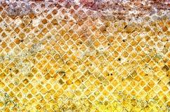 La struttura di pietra del muro di mattoni, può usare come fondo Immagine Stock