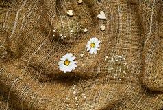 La struttura di tela da imballaggio con la camomilla delle erbe e dei cuori, il concetto di una festa e un fondo romantico Fotografia Stock