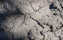 La struttura di terra ha inaridito dalla siccità, i precedenti delle crepe di messa a terra con il lerciume Fotografia Stock Libera da Diritti