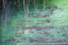 La struttura di verde ha dipinto la parete di legno incrinata a partire da tempo Immagini Stock Libere da Diritti
