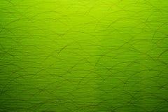 la struttura verde della parete Fotografia Stock