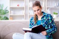 La studentessa che legge il libro che si siede sul sofà Fotografie Stock Libere da Diritti