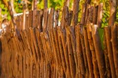 La stuoia dei precedenti grigi dei vecchi ramoscelli di legno dentro all'aperto in tempo soleggiato Immagini Stock