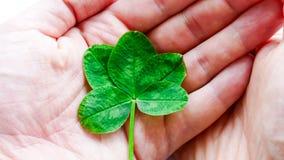 La suerte está en sus manos - concepto de la suerte Imagen de archivo libre de regalías
