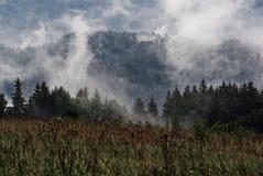 La Suisse de Bohème après la pluie Images stock