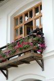 La suora innaffia i fiori Fotografie Stock