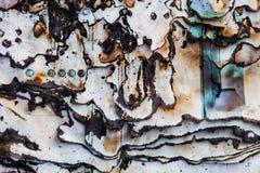 La superficie bruciata della carta con buio ha carbonizzato i bordi della pagina Fotografia Stock